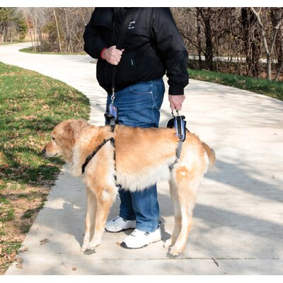 Solvit CareLift Lifting Aid Full-Body Dog Harness