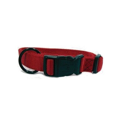 Adjustable Dog Collar in Red