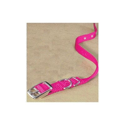 Single Thick Nylon Dog Collar in Hot Pink