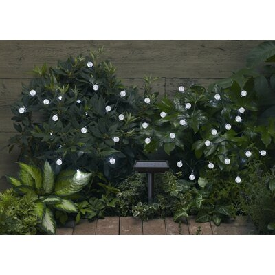 Smart Solar Smart Solar Accents Ball Light String