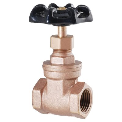"LDR 2"" IPS Heavy Duty Low Lead Gate Valve"