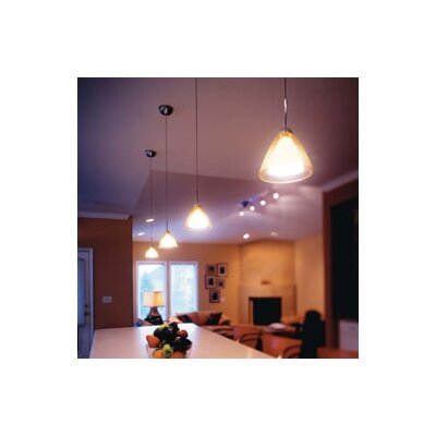 LBL Lighting Tear-SII Coax 1 Light Mini Pendant