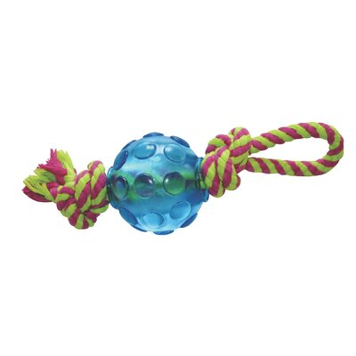 PetStages Orka Mini Ball Chew Dog Toy