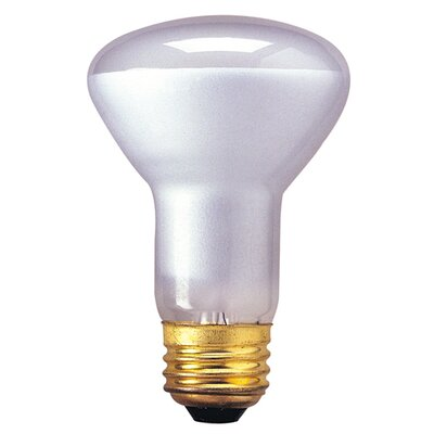 Bulbrite Industries 45W R20 Indoor Reflector Incandescent Bulb for Spot
