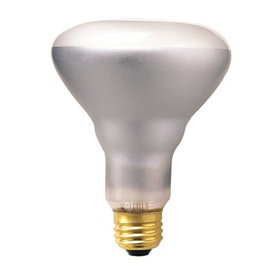 Bulbrite Industries 65W Incandescent BR30 Indoor Reflector Flood Light Bulb with E26 Base in Clear