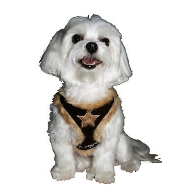 Fur Star Dog Harness Vest in Brown