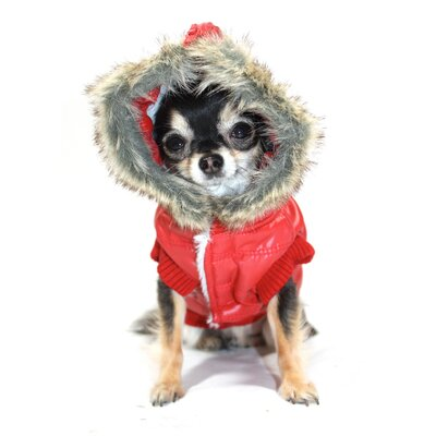 Hip Doggie Split Dog Hood Jacket in Red