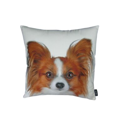 lava Papillion Pillow