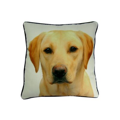 lava Lab Pillow