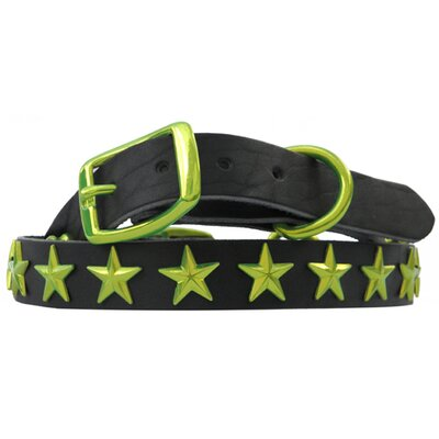 Medium / Large Genuine Leather Dog Collar Lime with Stars