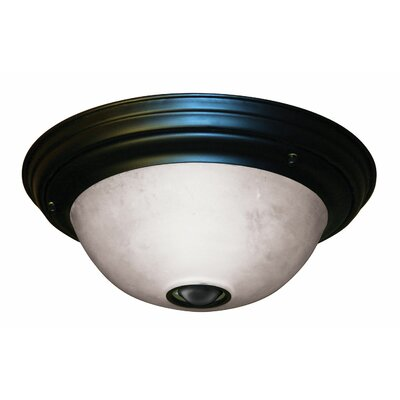 3 Light Activated Ceiling Light