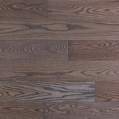 "Jasper Stained Semi-Gloss 4-1/4"" Solid Red Oak Flooring in Charcoal Light/Natural"