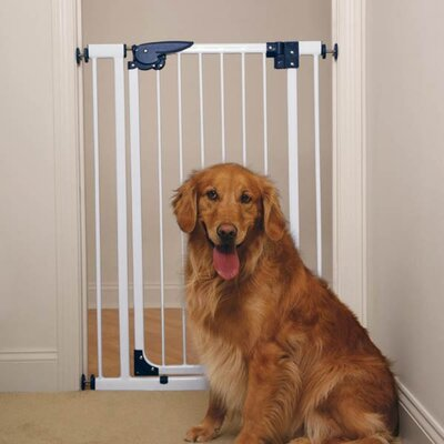 Pressure Mounted X-Tall Gate in White