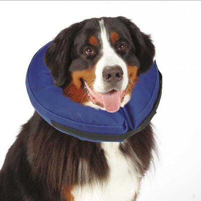 Total Pet Health Inflatable Dog Collar