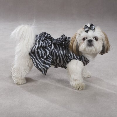 Platinum Print Zebra Dog Dress in Black