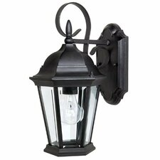 Carriage House 1 Light Outdoor Wall Lantern