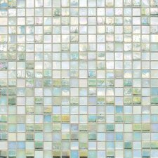 "City Lights 12"" x 12"" Mosaic Blend Field Tile in St. Moritz"