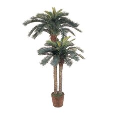 Silk Sago Palm Double Potted Tree