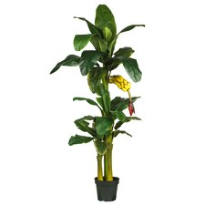"72"" Silk Triple Stalk Banana Tree in Green"