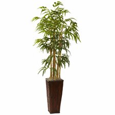 Bamboo with Decorative Planter