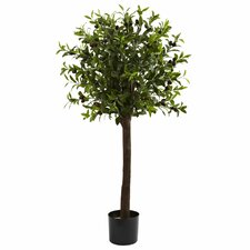 Olive Topiary Silk Tree