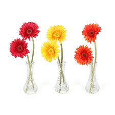 Gerber Daisy in Red / Orange / Yellow with Bud Vase (Set of 3)