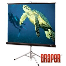 Glass Beaded Diplomat Portable Screen - 100' diagonal NTSC Format