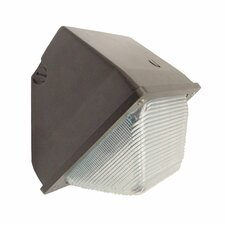 70W HPS Outdoor Small Wall Light in Bronze