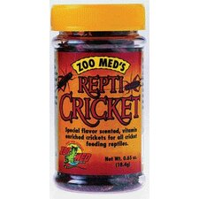 Cricket Food for Reptiles