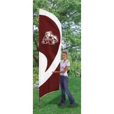 NCAA Tall Team Flag
