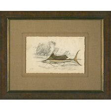 Swordfish Framed Print