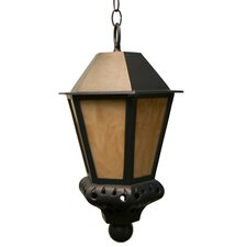 Tuscany TC3800 Series 1 Light Hanging Lantern