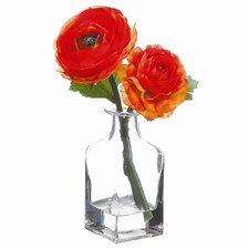 Ranunculus in Glass Vase
