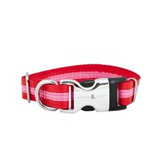 Rufus & Coco Bronte-Striped Nylon Dog Collar