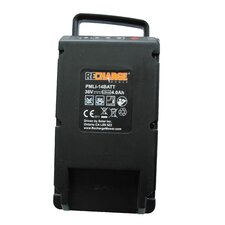 36 Volt Lithium Replacement Battery