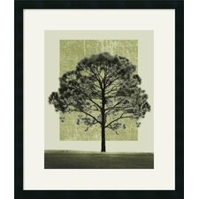 Nature's Shapes I Framed Art Print by Harold Silverman