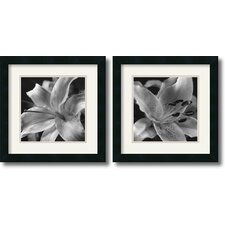 Lily Framed Print Set by Gaetano Art Group (Set of 2)