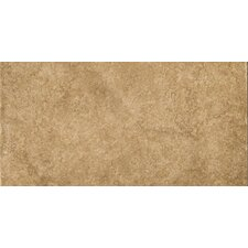 "Genoa 12"" x 24"" Glazed Porcelain Tile in Campetto"