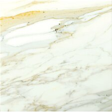 "Calacata Oro 12"" x 12"" Honed Marble Tile in Calacata"