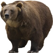 Ultimate Brown Bear Pre-cut Wall Mural