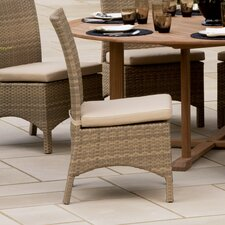 Torbay Dining Side Chairs with Cushions (Set of 2)