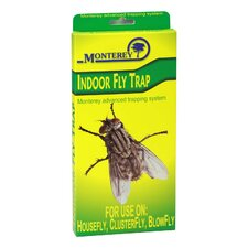 Indoor Fly Trap (Set of 4)