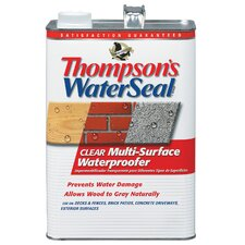 1 Gallon Clear WaterSeal® Multi-Surface Waterproofer 24101