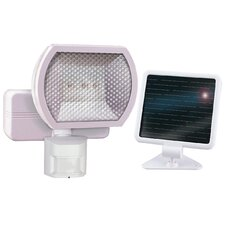 1 Light Solar Motion Floodlight