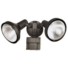 DualBrite 2 Light Motion Flood Light