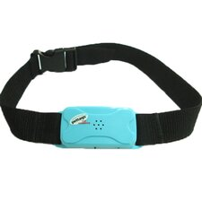 Pet Tag Pro No Bark Large Collar in Blue