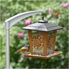 Sun & Star Lantern Wild Bird Feeder