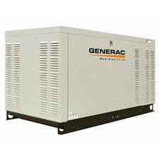 25 Kw Liquid-Cooled Single Phase 120/240 V Natural Gas Standby Generator with CSA, SCAQMD, and EPA Compliance in Steel