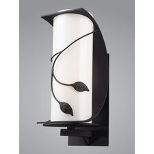 Hedera 1 Light Outdoor Wall Sconce