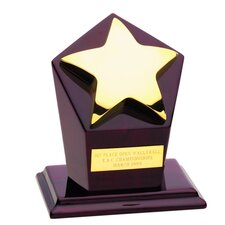 Gold Star Runner-Up Award